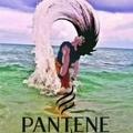 @phantom fenix
