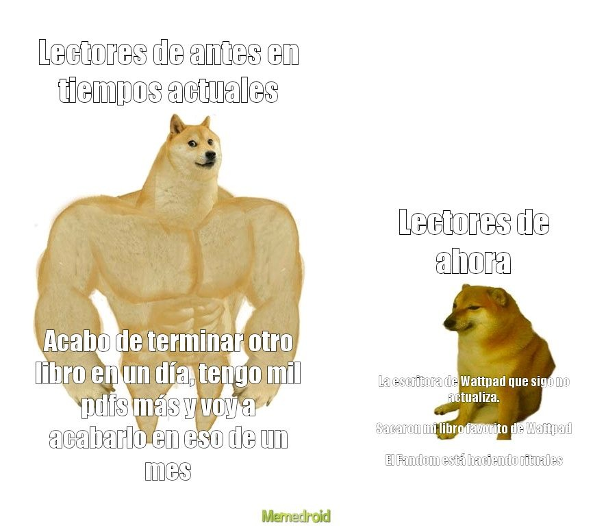 Lectored - meme