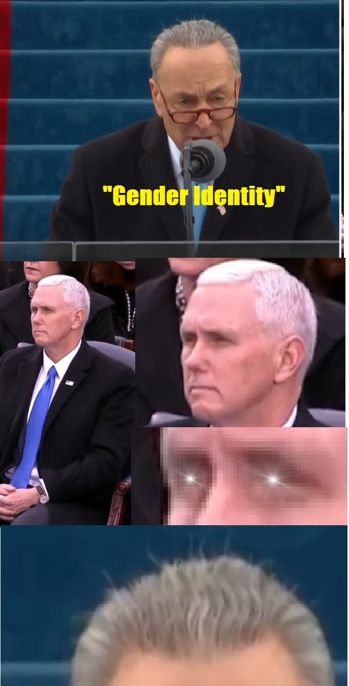 """Mike """" like the cock, get a shock"""" Pence - meme"""