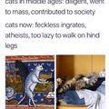 cat memee