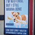 Had to take a double look. Neutering ad in Ca Valley