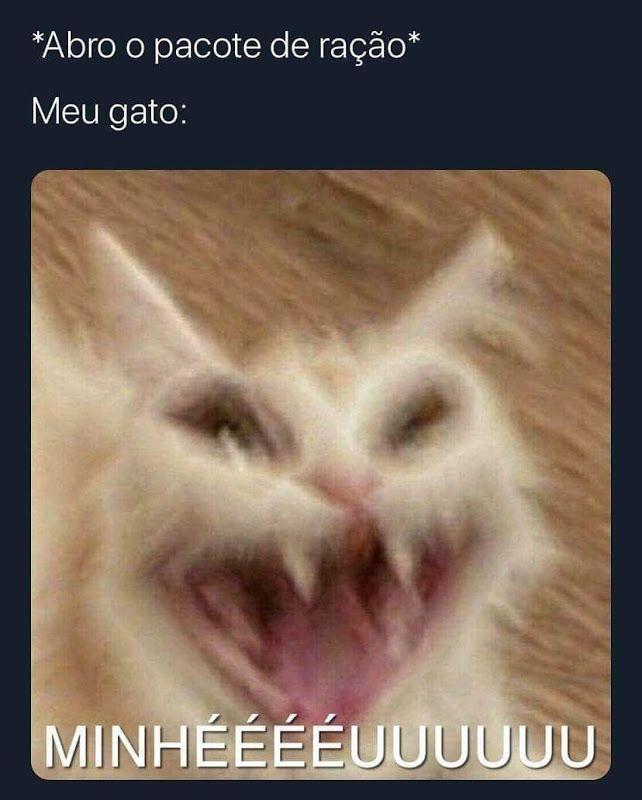 Miaauau - meme