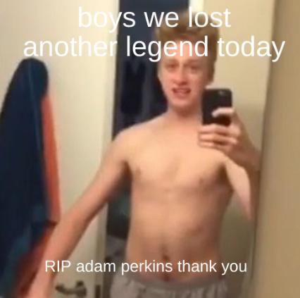 RIP adam perkins - meme