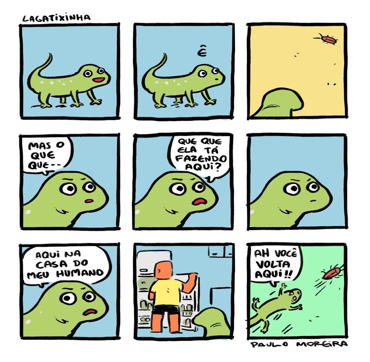 Diga não aos mals tratos as lagartixas - meme