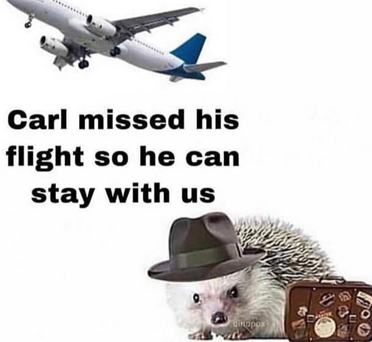 yay carl - meme