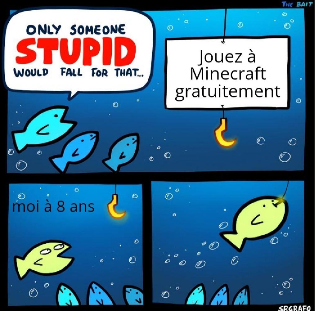 J'arrivais pas à mettre la phrase du début en français et j'voulais pas tout mettre en anglais. J'étais dans une impasse ! - meme