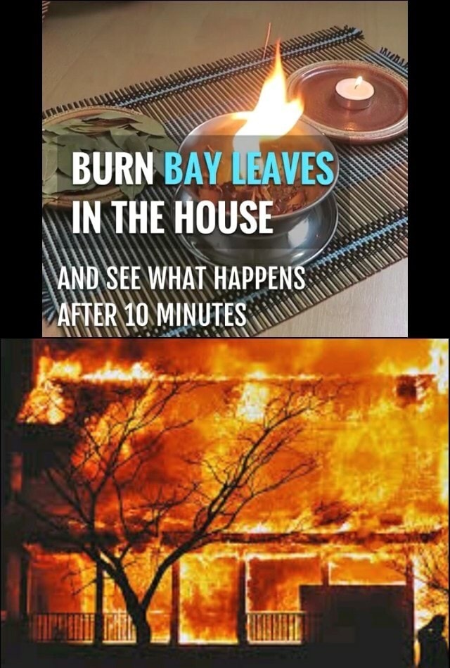 burn bay leaves - meme