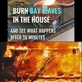 burn bay leaves