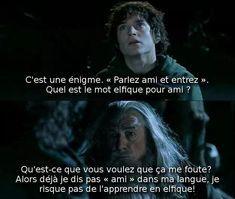 Sans Frodo il ne serai plus là - meme