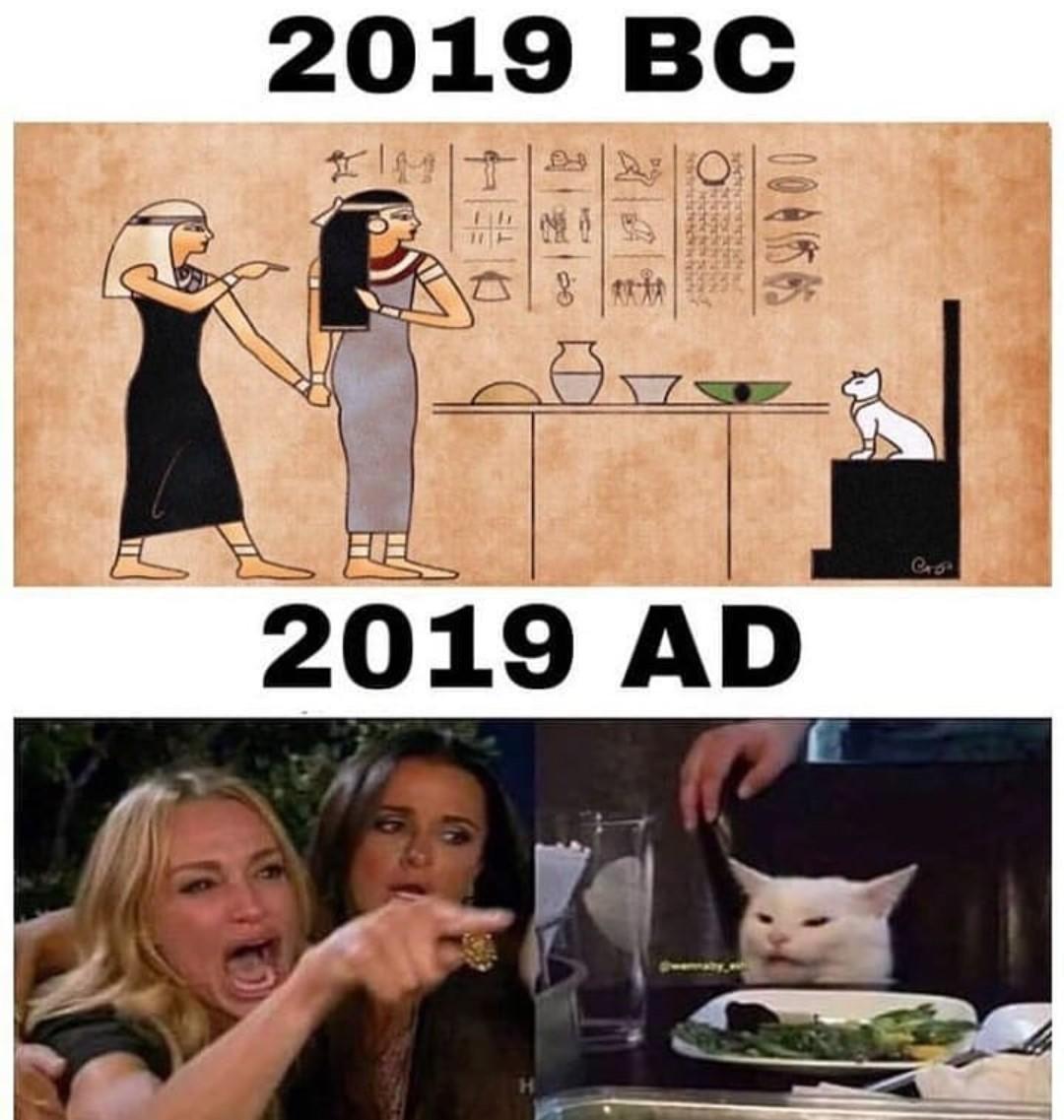 Evolving - meme