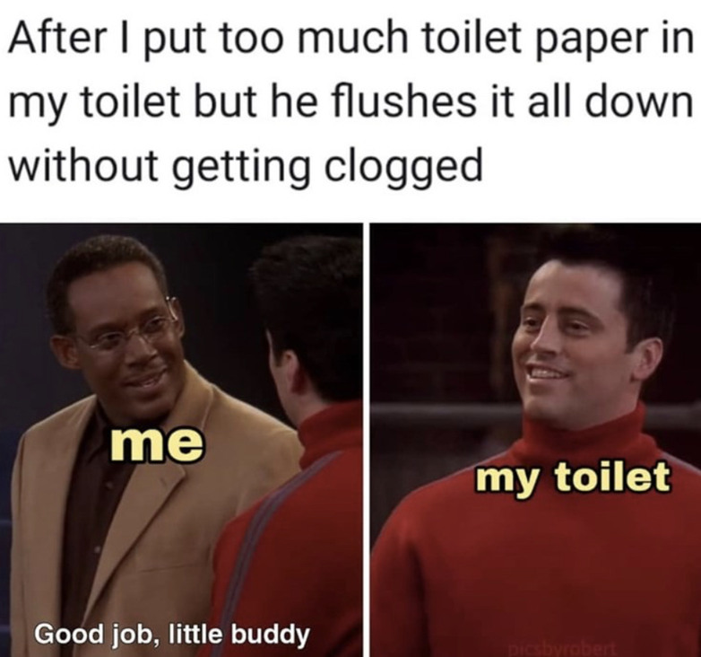 My little toilet friend - meme