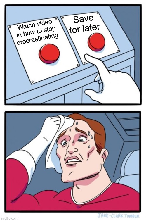 Procrastination Puzzlement - meme