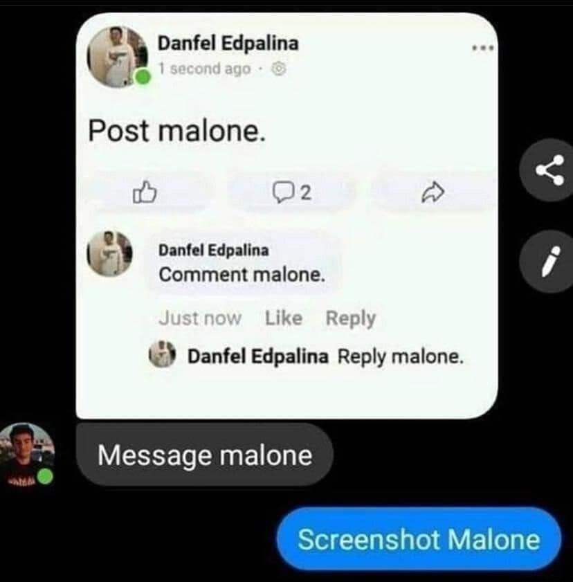 Repost Malone - meme