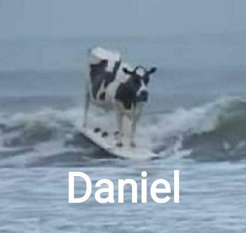 Daniel - meme