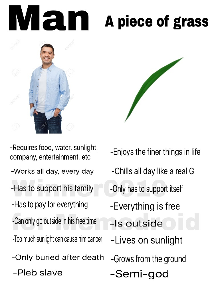 Grass masterrace - meme