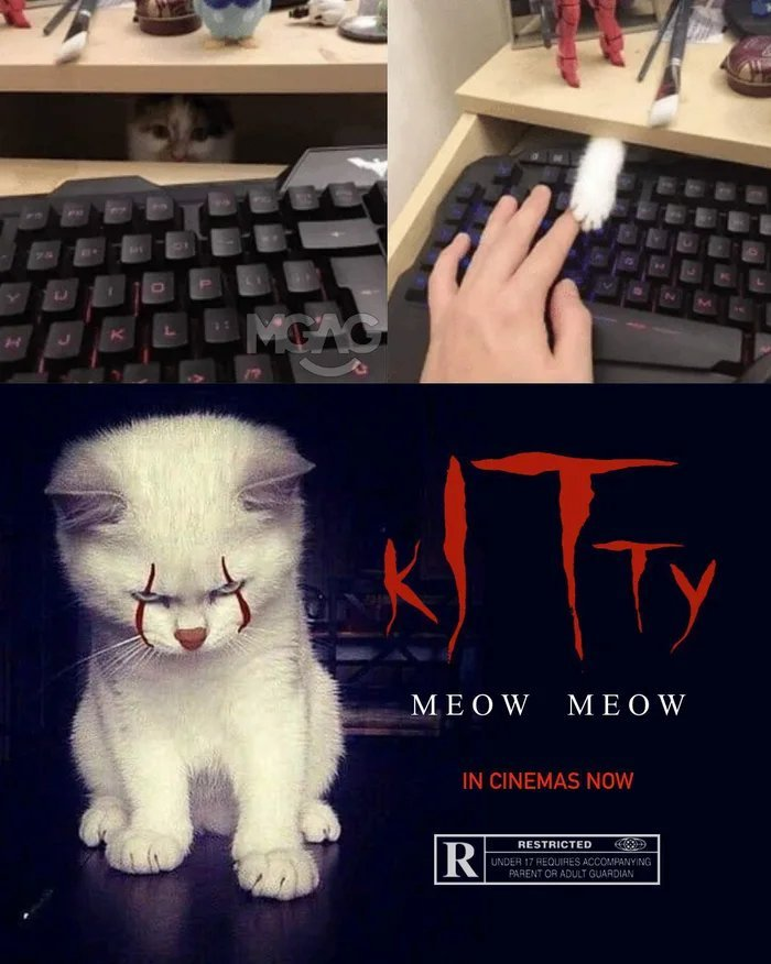 kITty  - meme