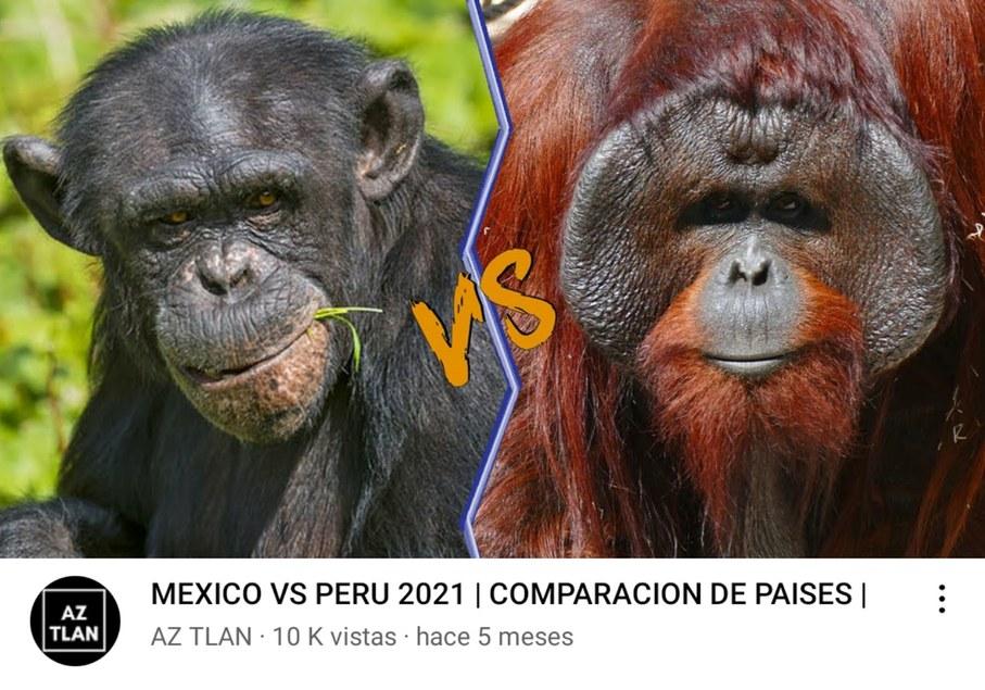 Mexichangos vs Peruanos - meme