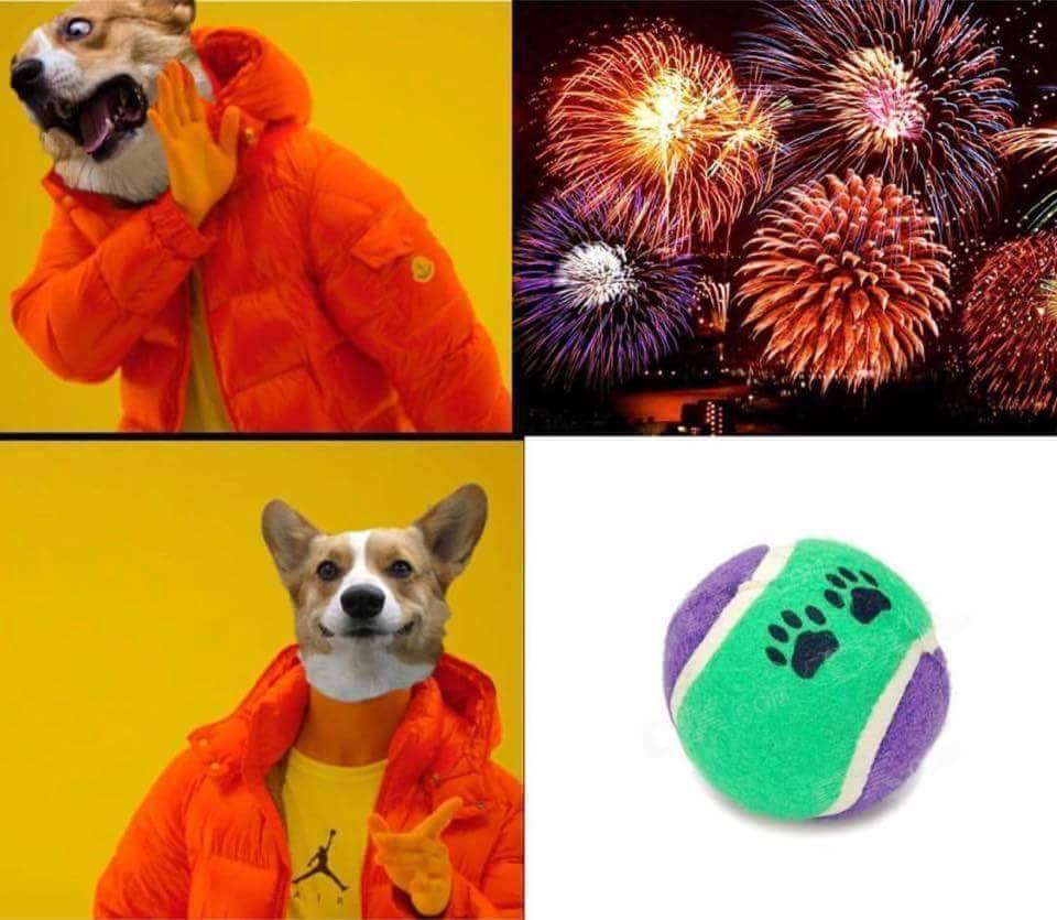 Doggo don't care for no firework - meme