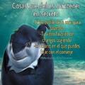 Mentalidad do Tiburao