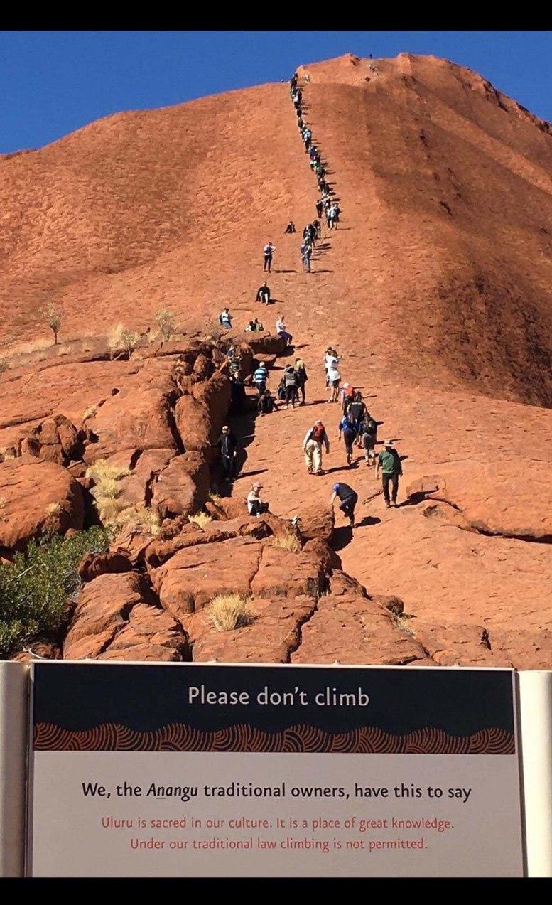 please do not climb - meme