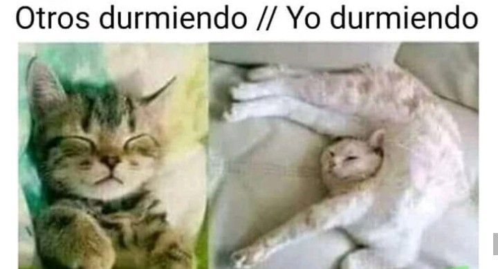 F      SIGUEME Y TE SIGO - meme
