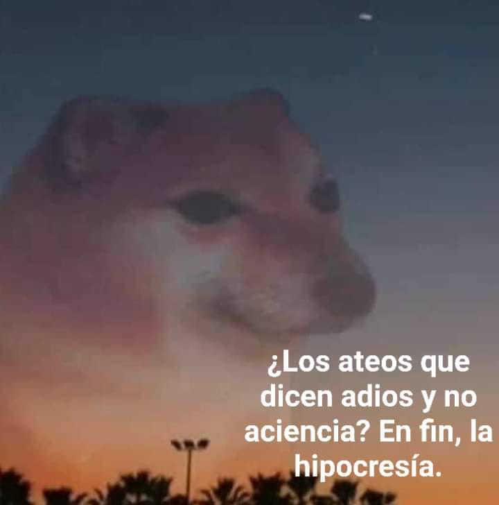 STE DON COMEDIA ATEO - meme