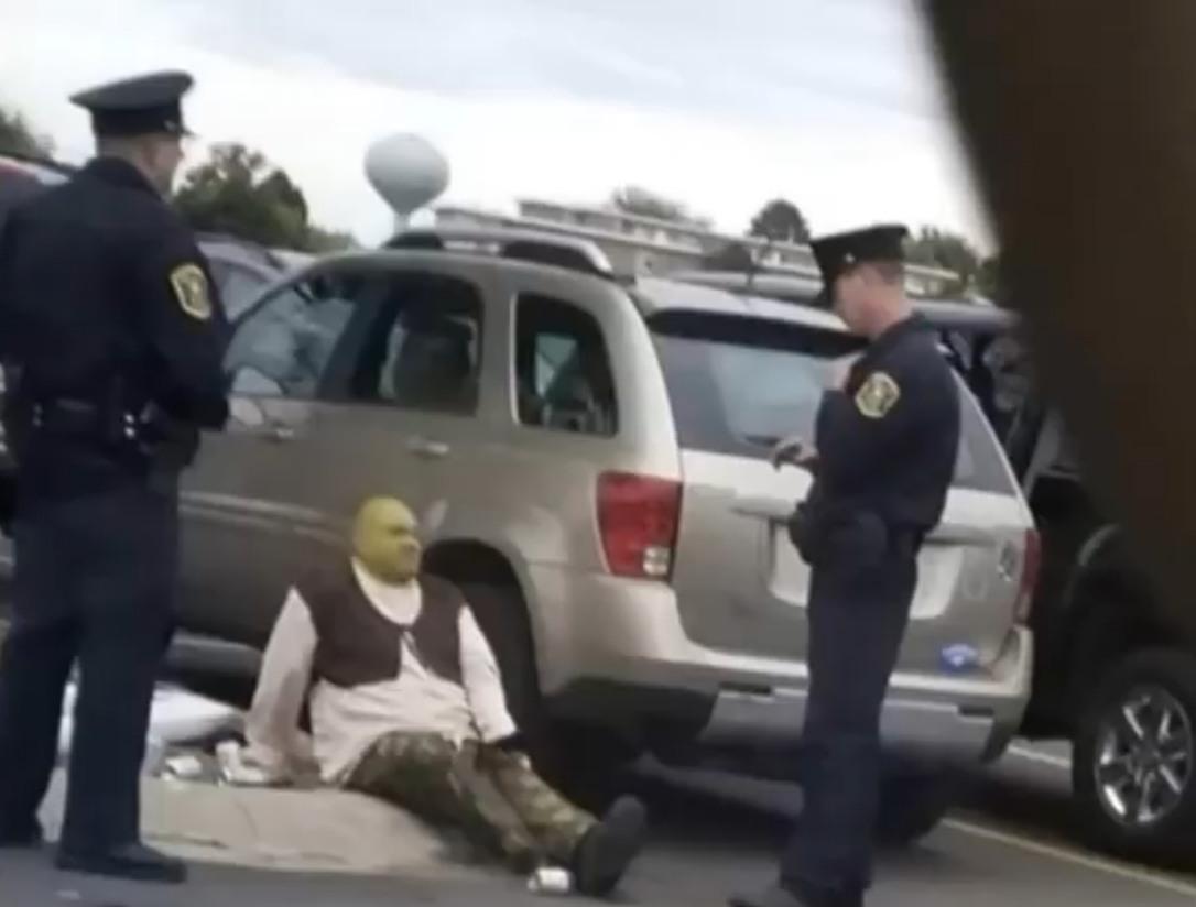 Gente capturaron a Shrek - meme