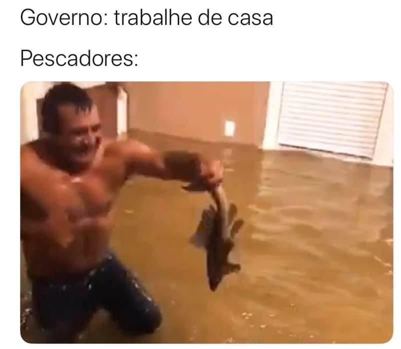 baiacu - meme