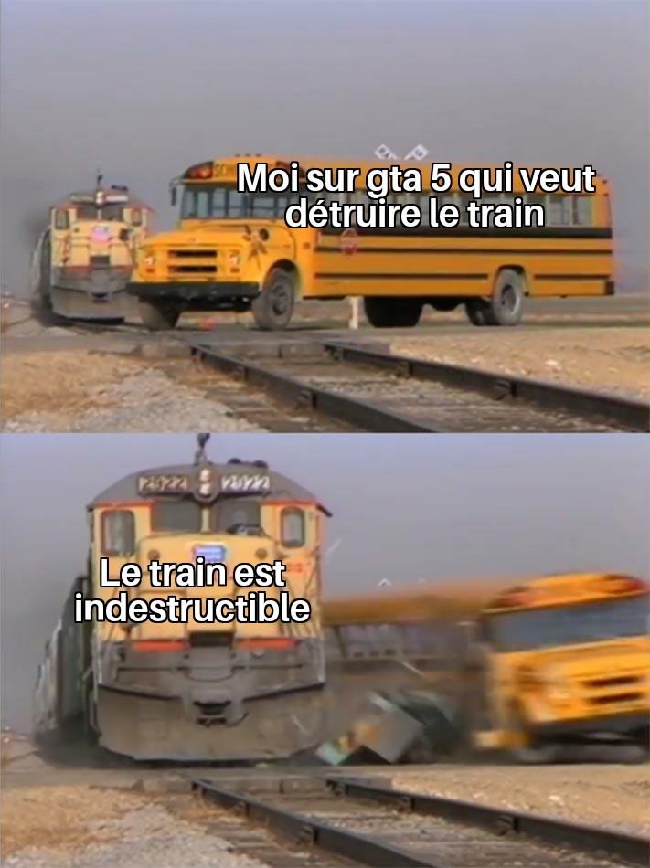 Vous avez fait quoi avec le train sinon? - meme