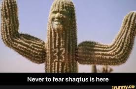 SHAQ - meme