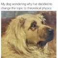 Confused boi