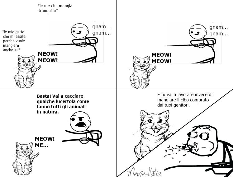 Aiuto! Il mio gatto mi parla. - meme