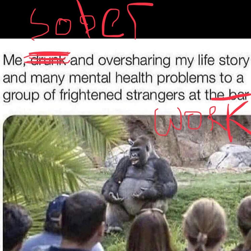 my real life - meme