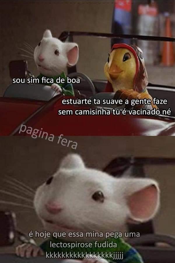 Pombo - meme