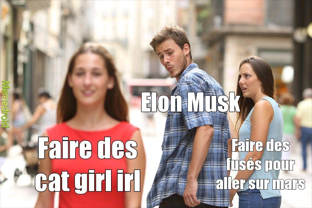 Ce que pense Elon musk - meme