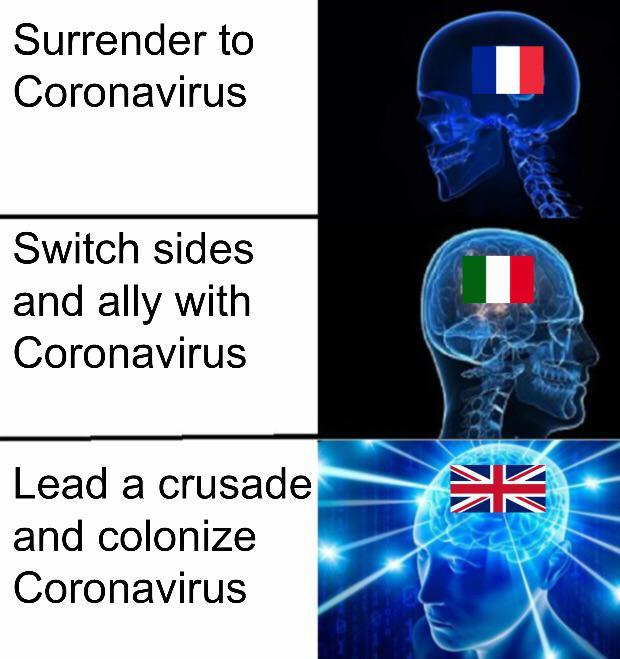 How countries are dealing with the pandemic - meme