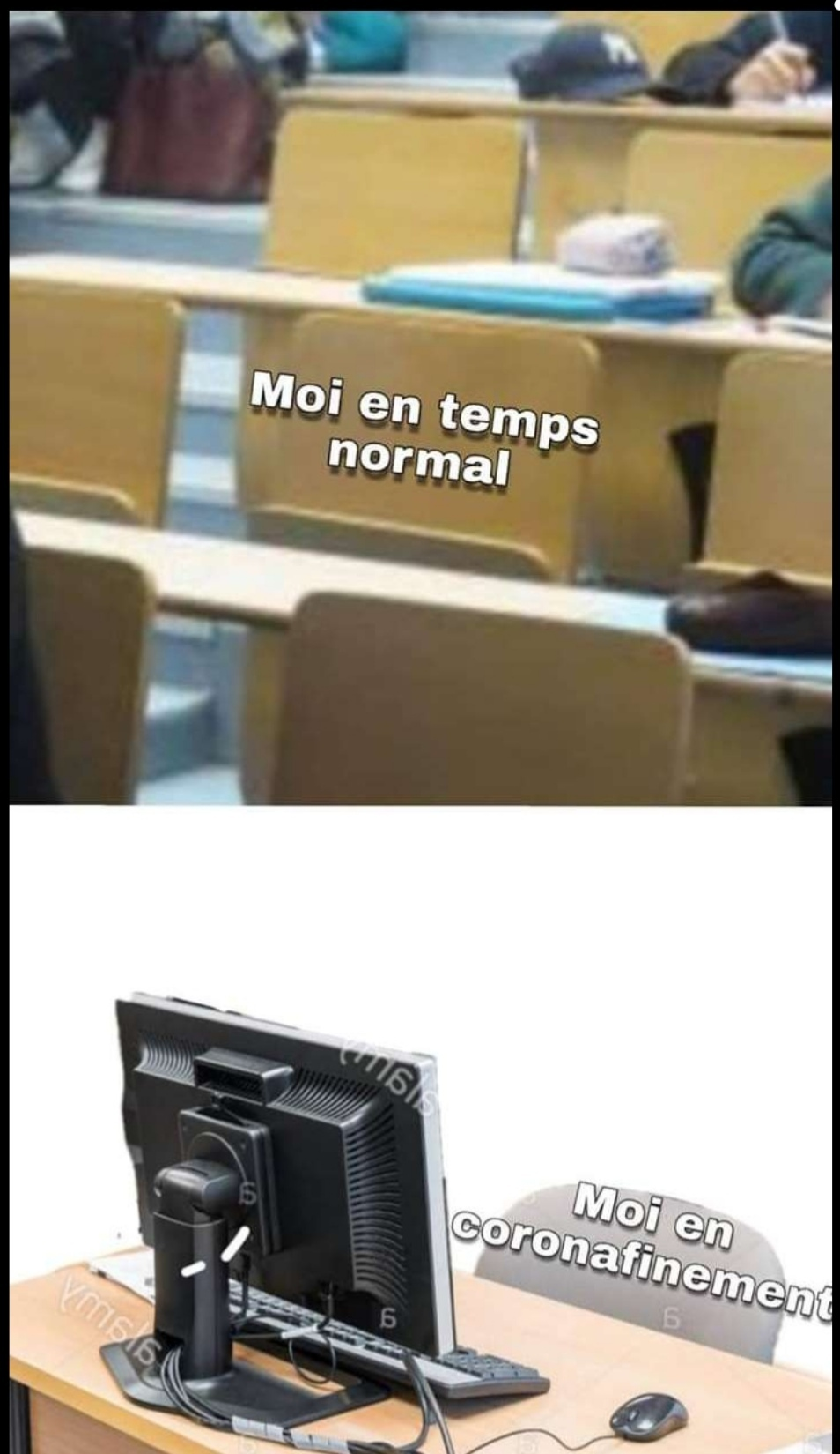 Tags - meme