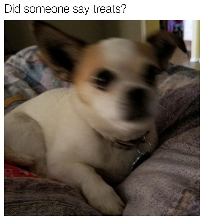 Treats - meme