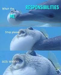 Responsibilities. Responsibilities.  - meme