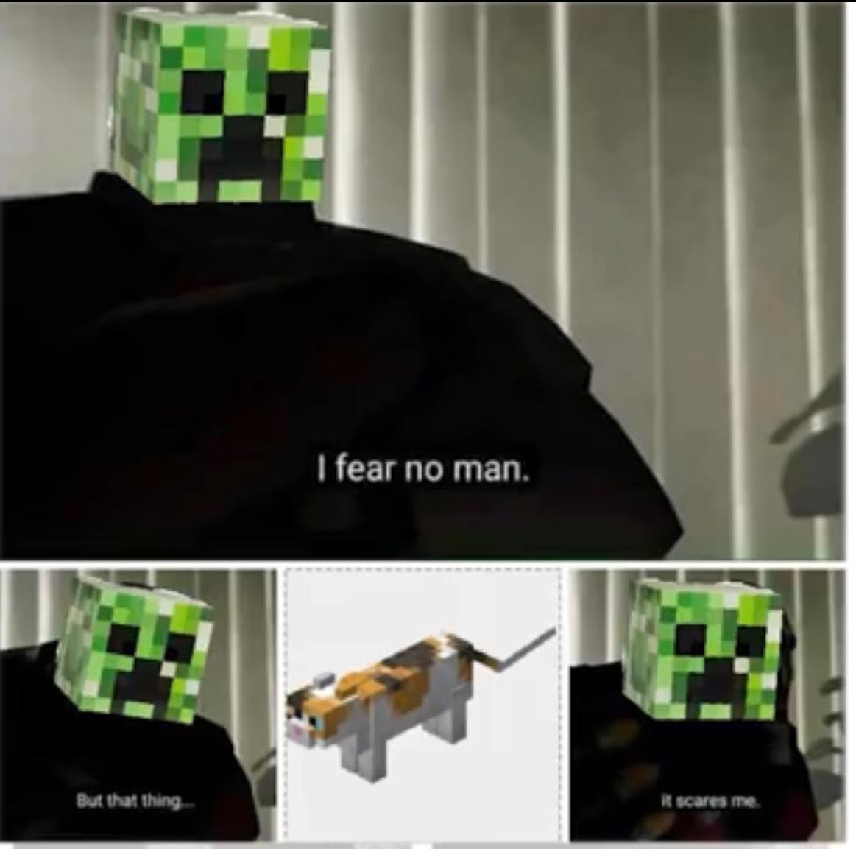 Creeper......................Aw man - meme