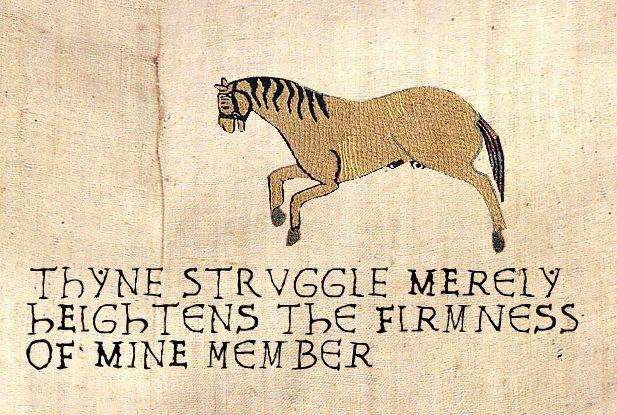 Thyne Struggle Merely Heightens the Firmness of Mine Member - meme