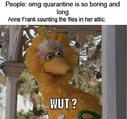 Big bird started to lose hope and faith in humanity - meme