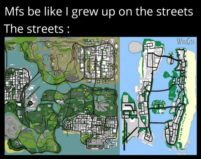 I grew up on the streets - meme