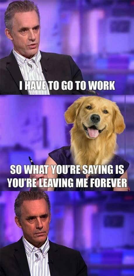 Love this interview - meme