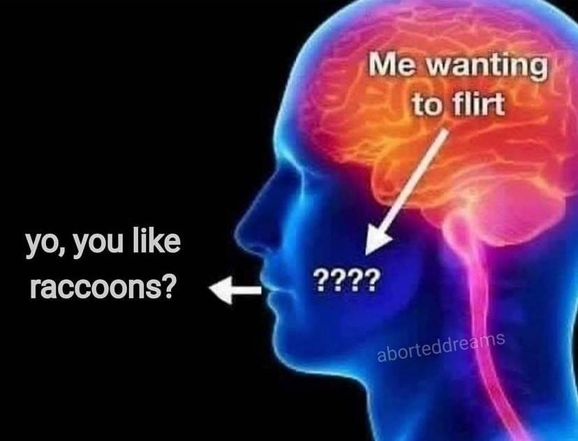 I in fact do - meme