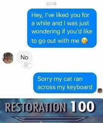 My cat ran across my keyboard... - meme