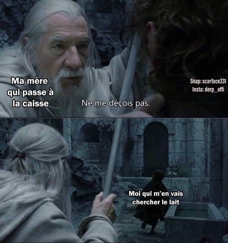 Cours - meme