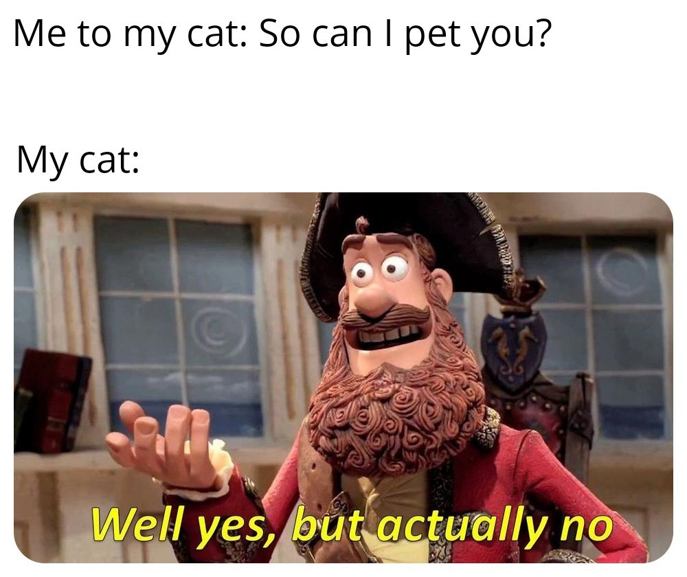 What use are you to me?! (Said my cat to me) - meme