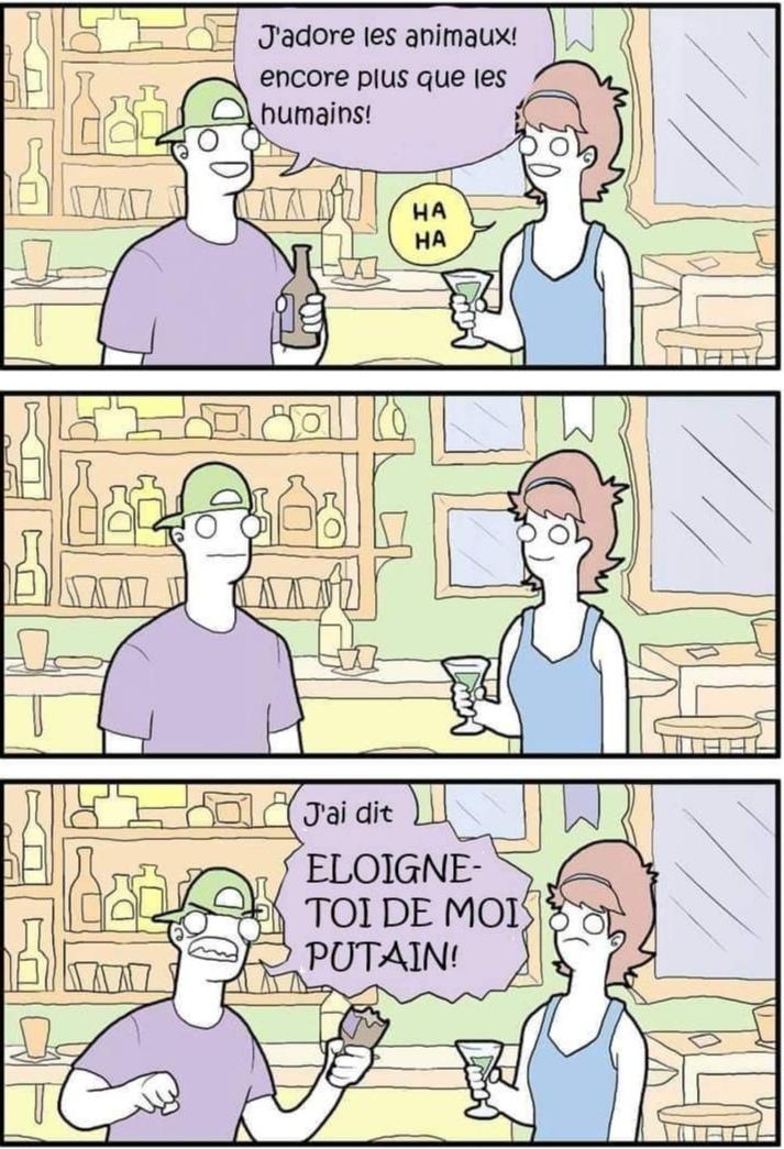 C'est quand même pas mal de travail de rogner/d'effacer le texte en anglais/re remplir avec la bonne couleur/traduire le meme avec la bonne police etc.... Non en fait c'est du bon gros plagiat xD