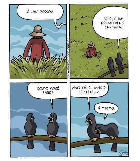 Papagaio preto aprende rápido - meme